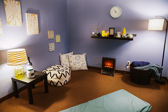 Our veterinary medical acupuncture suite features calm, relaxing colors, in a spa-like atmosphere