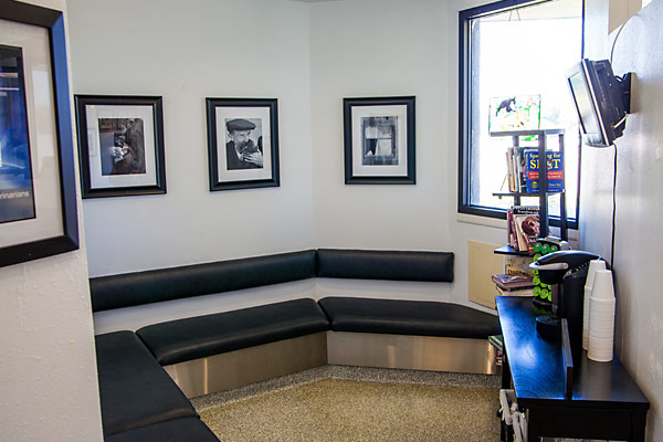 A quiet waiting room nook in the lobby area for our more timid patients