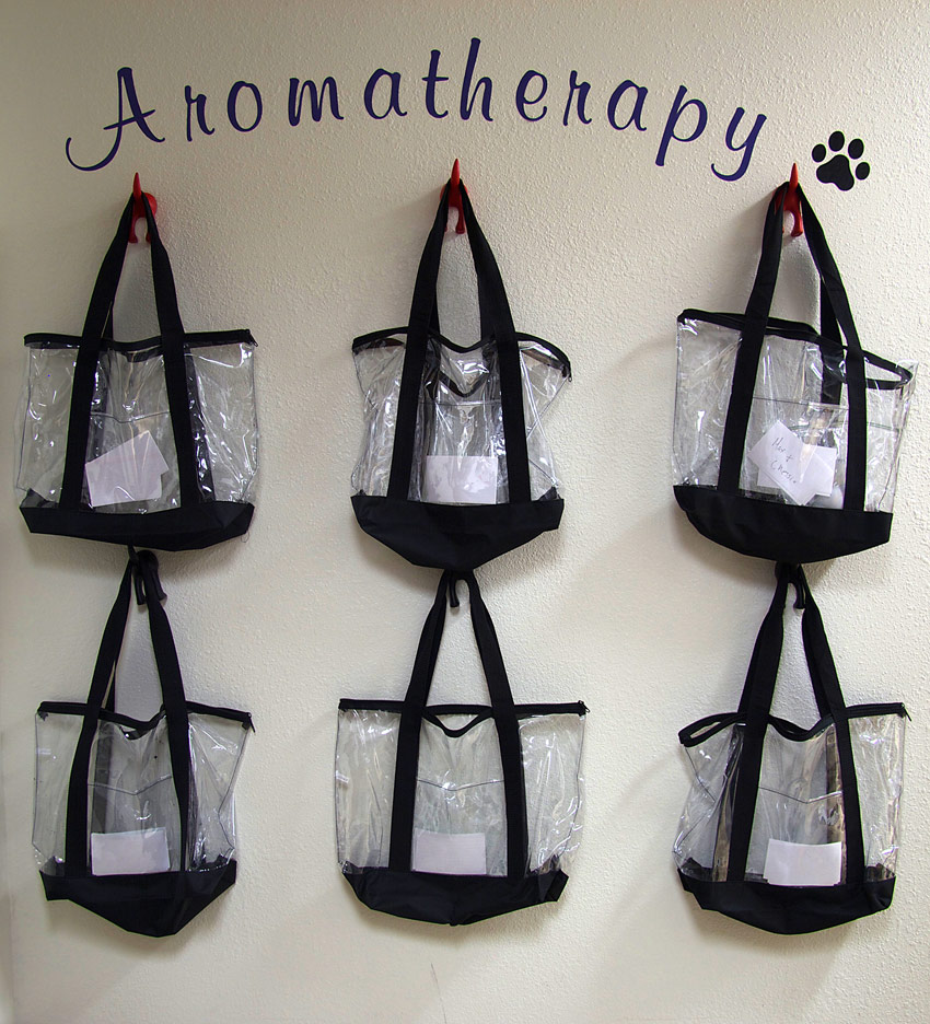 Rowlett Rockwall Dog Boarding Aromatherapy Wall